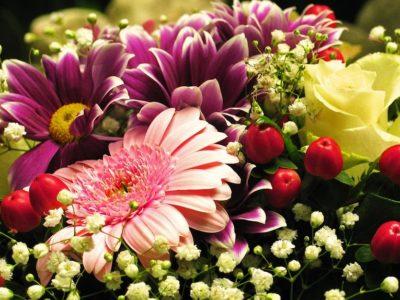 Unsere Blumen – Mit welcher Vielfalt arbeitet die Blumenhalle