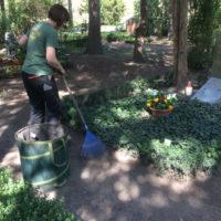 Thema: Grabpflege Leipzig - Säubern der Wege mit einen Drahtbesen