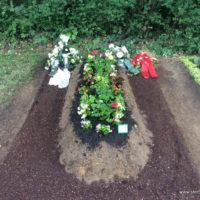 Grabgestaltung in Leipzig Erdwahlgrab