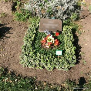 Zum Thema: Grabgestaltung Leipzig - Der Urnenhügel
