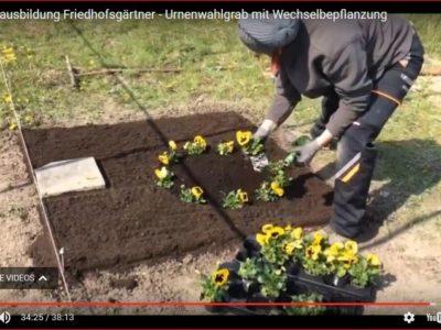 Friedhofsgärtner – Zwischenprüfung / Grabgestaltung