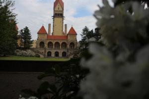 Krematorium hinter Rhododendron