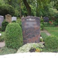 Grabpflege Leipzig - Schnitt Rahmengehölz