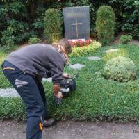 Thema: Grabpflege Leipzig - Das Schneiden der Bodendecker - Grabpflege Leipzig