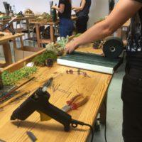 Workshop Seminar Floristik