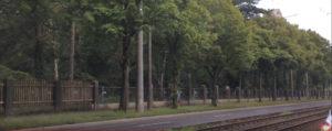 Zaun Südfriedhof - alt