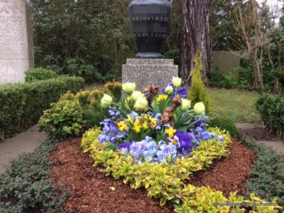 Die Frühjahrsbepflanzung – Grabpflege Leipzig