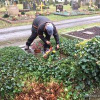 Connewitz Grabpflege