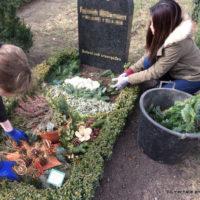 Thema: Grabpflege Leipzig - Entfernen von Tanne