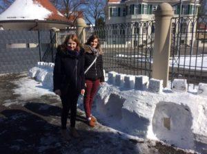 Schnee in der Ausbildung Floristik