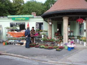Abriß und Neubau 2010 - Geschichte der Blumenhalle
