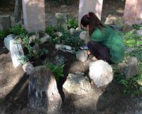 Geologengrab Credner