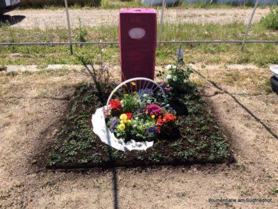 Friedhofsgärtner – Abschlussprüfung / Grabgestaltung