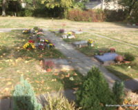 Friedhof Markkleeberg Grabpflege