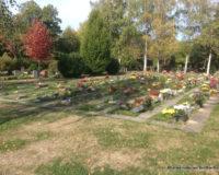 Urnengräber Friedhof Markkleeberg
