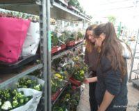 Schülerpraktikum Einkauf auf dem Großmarkt landgard