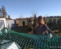 Schülerpraktikum Gärtnerei