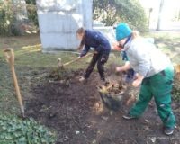 Schülerpraktikum Friedhof