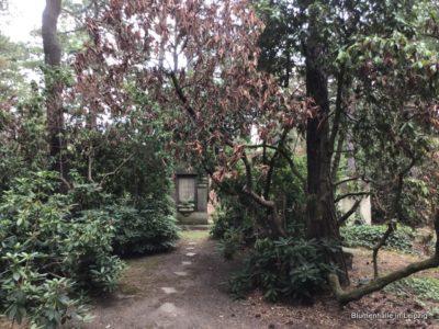 """Initiative zur Bewässerung – Südfriedhof Leipzig – Projekt: """"Wir helfen Alfred"""""""