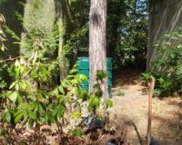 Initiative zur Bewässerung