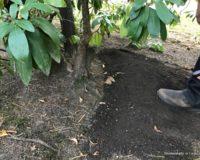 Initiative zur Bewässerung Zutaten Wir helfen Alfred